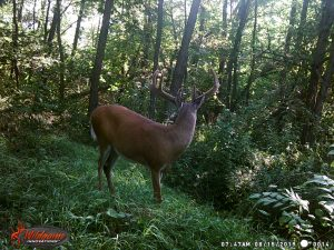 Public Land Journal Sept- Oct 4th