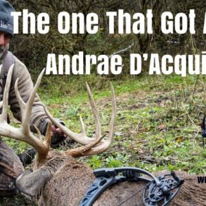 The One That Got Away : Andrae D'Acquisto